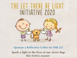 The Let There Be Light Initiative
