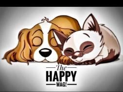 Dog Sterilisation Fund