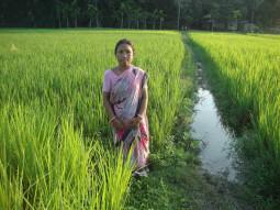 Saraswati Roy