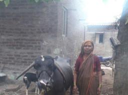 Kamalavva Ramappa Mang