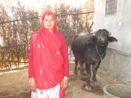 Radha Devi Choudhary