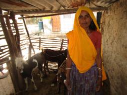 Sugna Devi