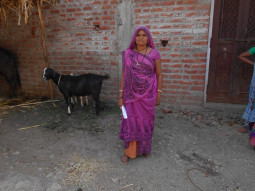 Vanitaben Jigubhai Damor