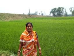 Bilwa Rani Biswas