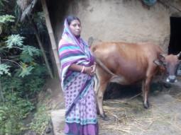 Sarojini Mishra