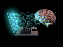 braindata