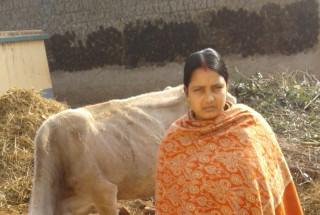 Chandmukhi Bhattacharya