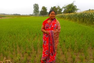 Taslima Begam
