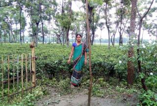 Madhabi Roy