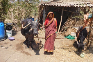 Kenchavva Dundappa Halakarani