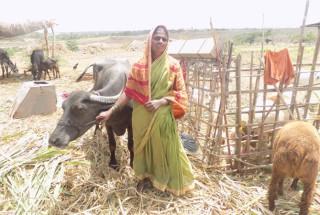 Shantavva Balappa Gaddennavar