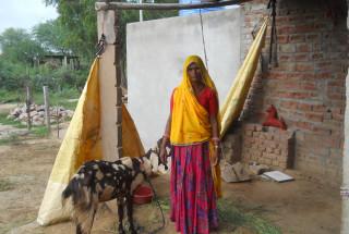 Bholli Devi