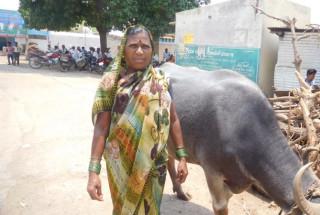 Bharamavva Kalloleppa Harijan