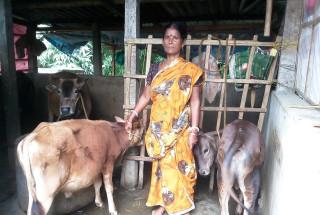 Nandita Ghosh