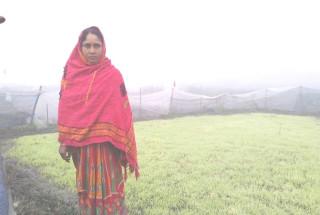 Manora Begam