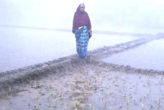 Bela Shil Sharma