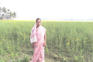 Daulatun Nechha