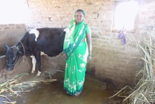 Jayashri Chandar Mang