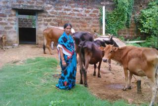 Binodini Tripathi