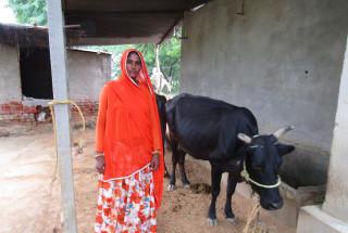Kishna Devi