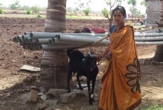 Sangeeta Raju Bharmgol