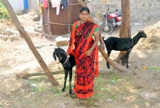 Jayashri Shankar Gasti