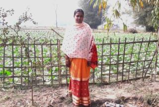 Rajina Bibi Sarkar