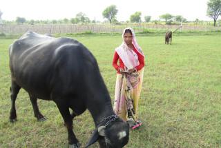 Pinki Devi