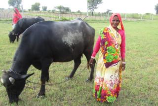 Kaili Devi