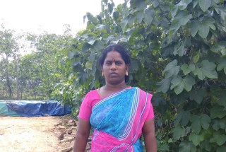 Jayasudha Balasubramaniyan