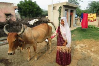 Minakshi Devi