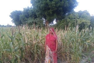Sopayari Devi