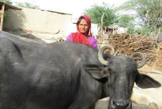 Chota Devi Yadav