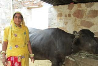 Meena Kanwar