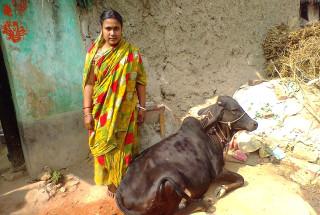Ashalata Bhuinmali