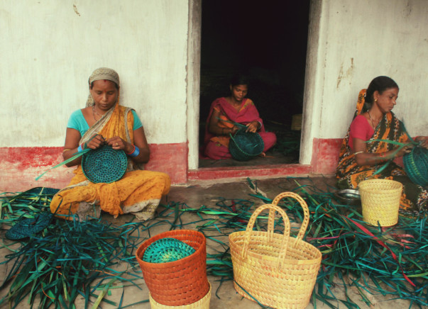 Support Usha and her group to purchase tools for their enterprise