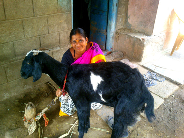 Help Rekha buy two more goats and increase her income