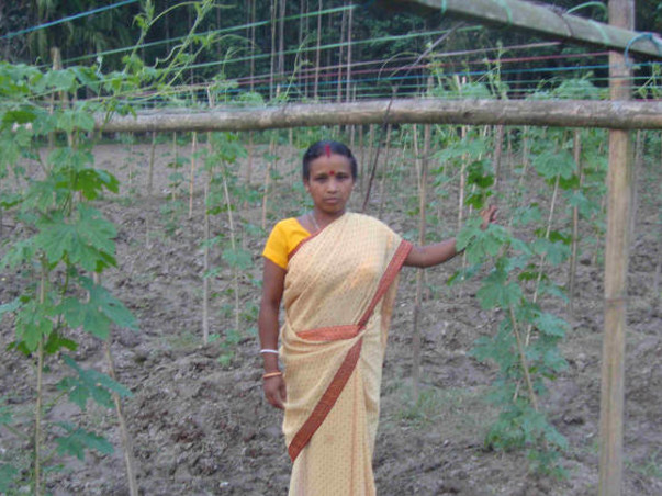 Help Sima Barman purchase seeds for bitter-gourd cultivation