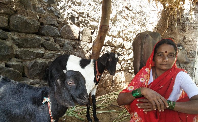 Malavva amidst her two goats