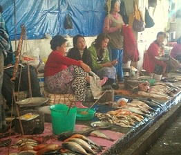 Women selling fish in the market