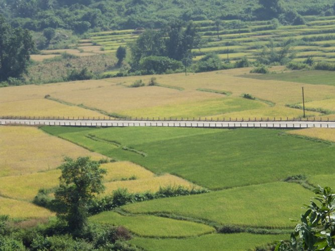 The road to the mountains passing through agricultural fields at the base of the mountains
