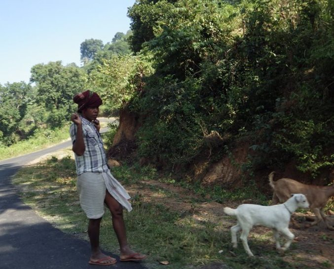 A tribal shepherd