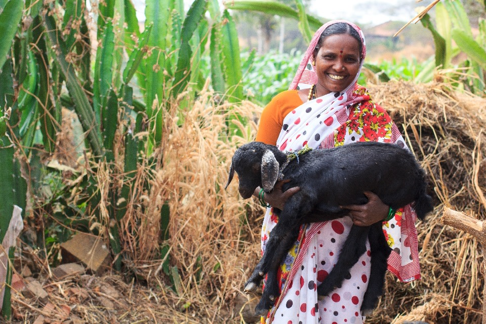 Adivevva from Vadral, Karnataka, is among the many former Devadasis rehabilitated through the efforts of MASS and the support of regular Indians who crowdfunded her goat rearing venture