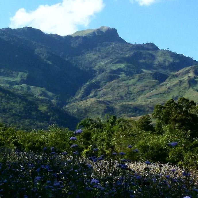 The sacred Koubru Mountain.