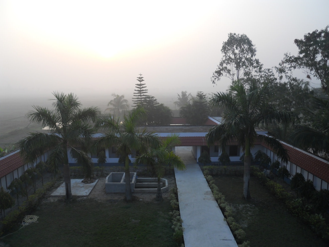 Lastly, my favourite picture: the VSSU guesthouse garden always being lit up by a simmering sunrise glow.