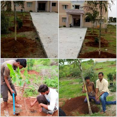 Plantation works which need fencing
