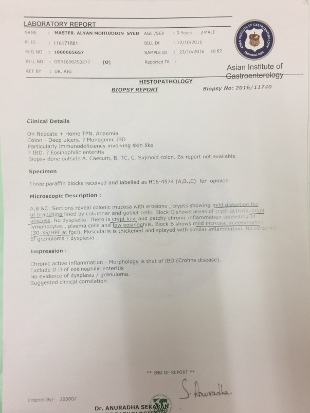 Colonoscopy Biopsy Report