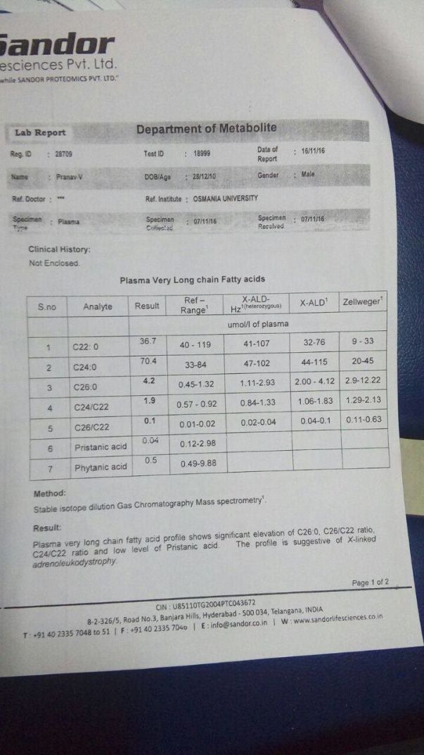 Gas Chromatography Report