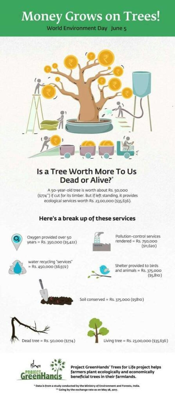 A tree is more worthy than you think!!