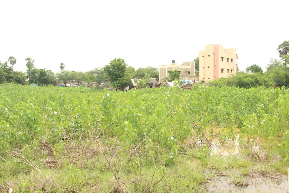 Chella perumal nagar pond: Before restoration